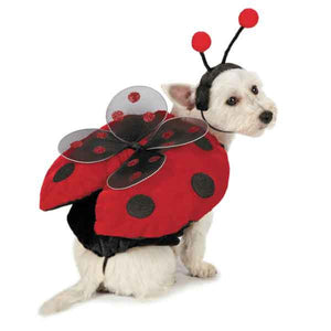 Lovely Little Ladybug Dog Costume