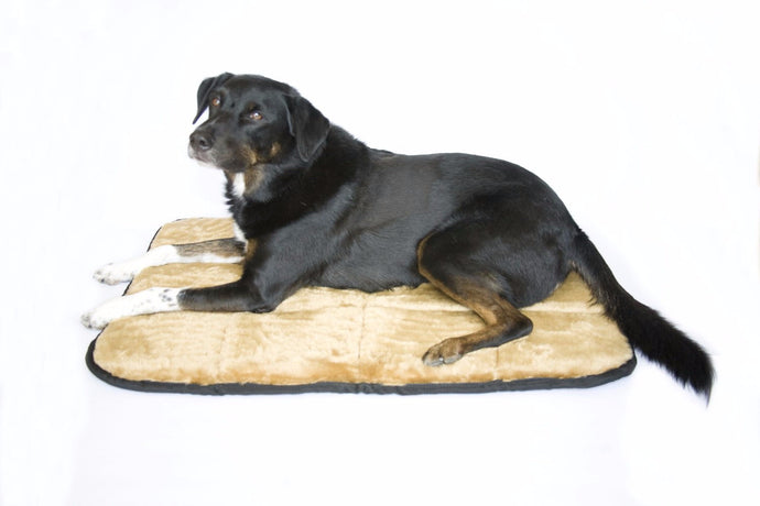 Fuzzy Buddy Dog Mat - Oh My Dog Supply