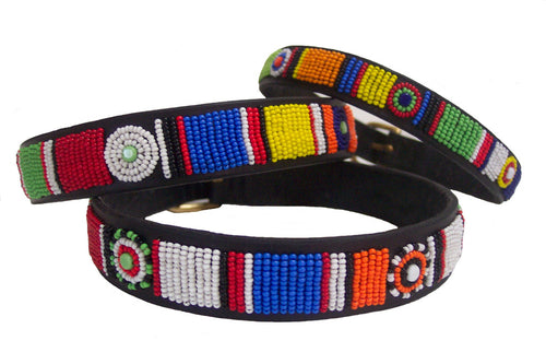Circle Of Life Tribal Dog Collar - Oh My Dog Supply
