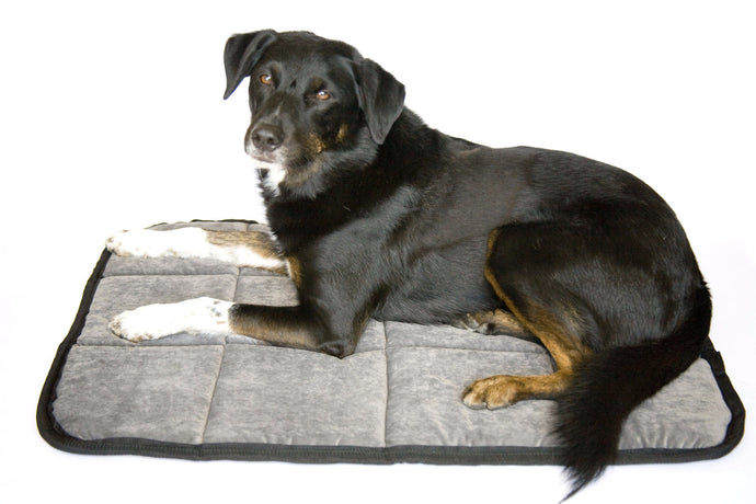 The Original Doggie Napper Mat