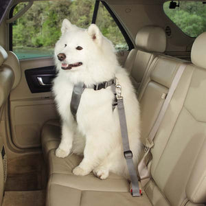 Classic Car Harness - Oh My Dog Supply