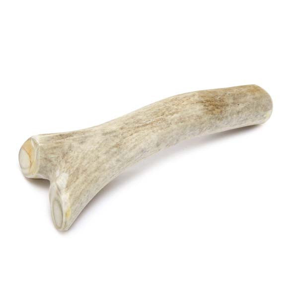 Deer Antler Chews - Oh My Dog Supply