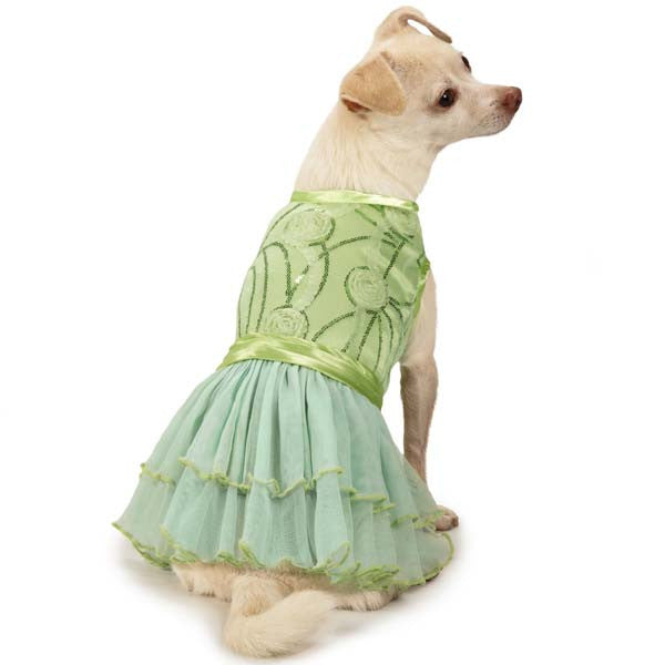 Zoey Dog Dress