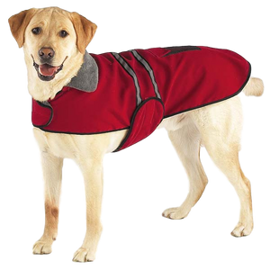 Classic Velvet Dog Coat - Oh My Dog Supply