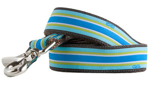 Union Street Dog Leash-Blue