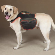 Deluxe Dog Back Packs - Oh My Dog Supply