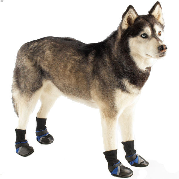 Guardian Dog Boots