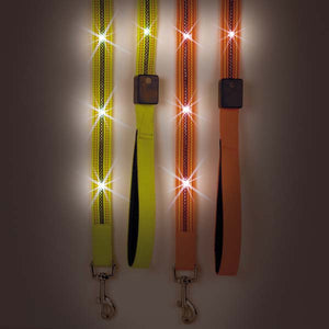 Ultra Bright LED Leads