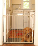 Lockout Dog Gate