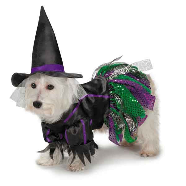 Scary Witch Dog Costume