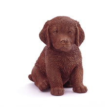 Load image into Gallery viewer, Retriever Puppy Chocolate Figure Puppies
