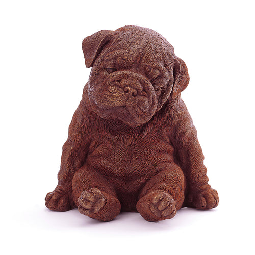 Bulldog Puppy Chocolate Figure NYC