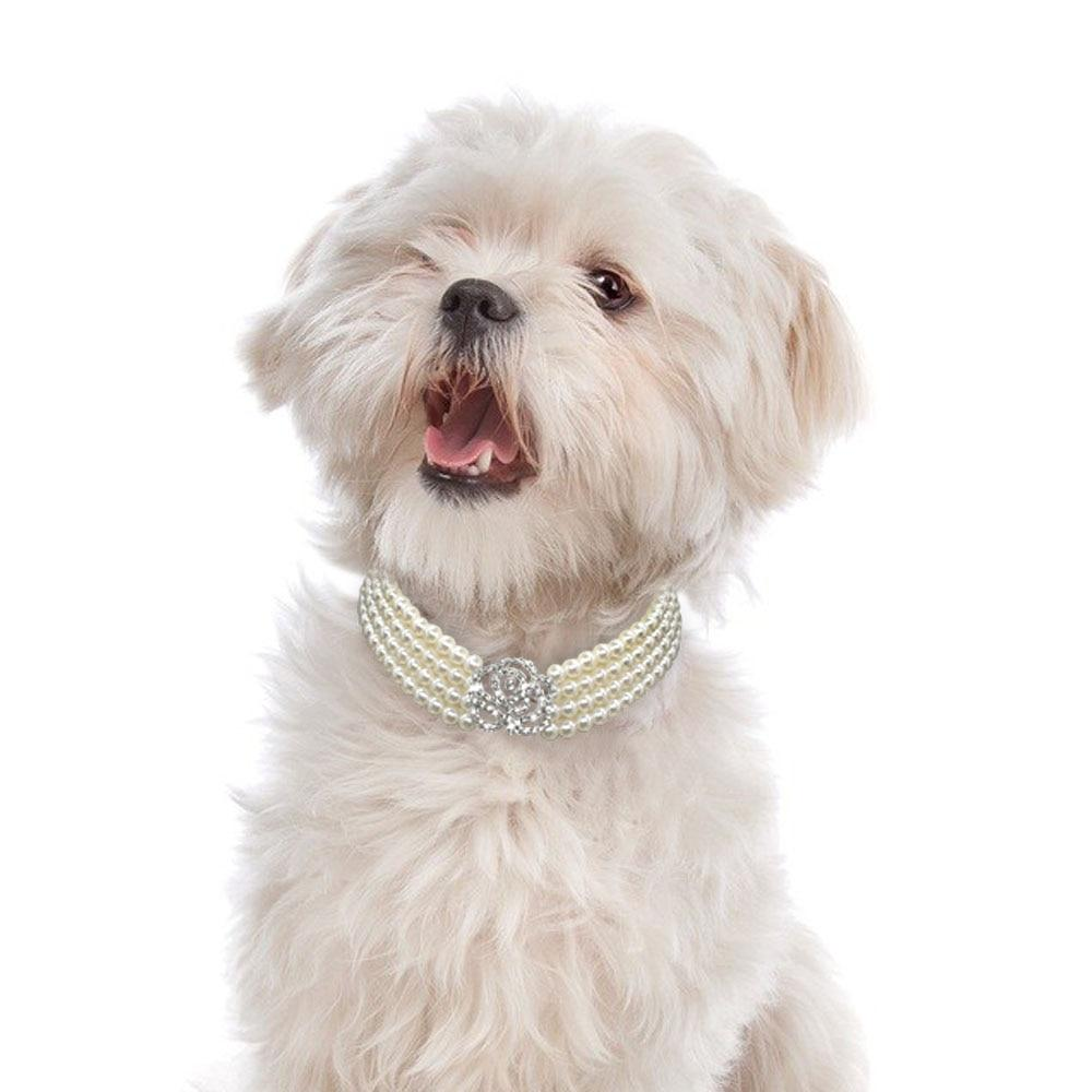 Pearl & Rhinestone Expandable Necklace Collar for Cats & Dogs