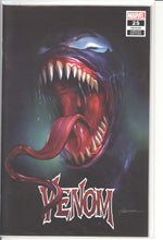 Load image into Gallery viewer, Venom #25 Maer Set