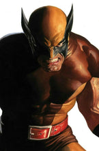 Load image into Gallery viewer, WOLVERINE #6 Cover A, B, and Timeless