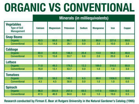 organic vs conventional, Dr. Firman E. Bear at rutgers university