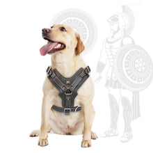 Load image into Gallery viewer, Durable Dog Harness Large Dogs Genuine Leather