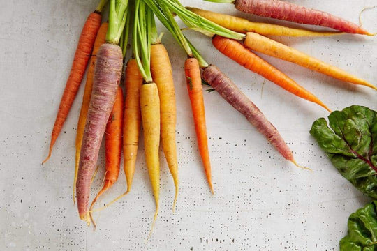 Carrots for Dogs: A Healthy Treat With a Nutritious Punch