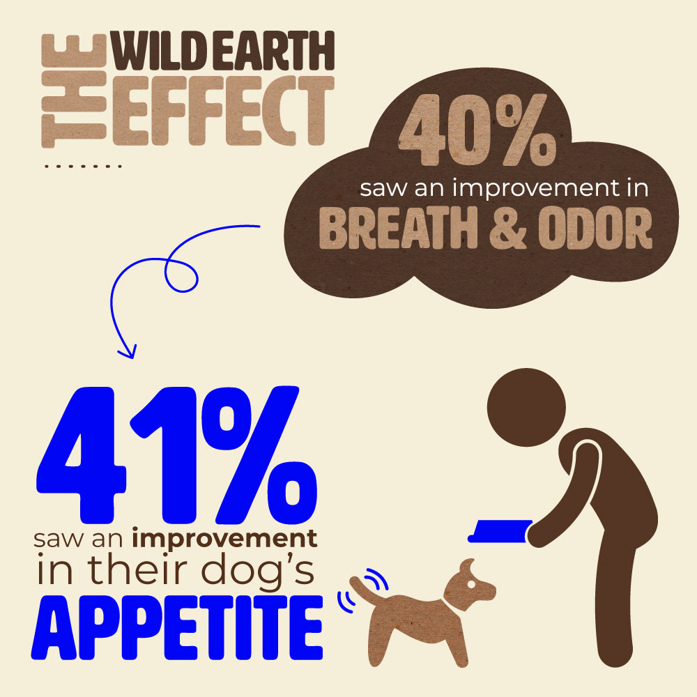 Wild Earth Impact On Dogs Breath And Odor