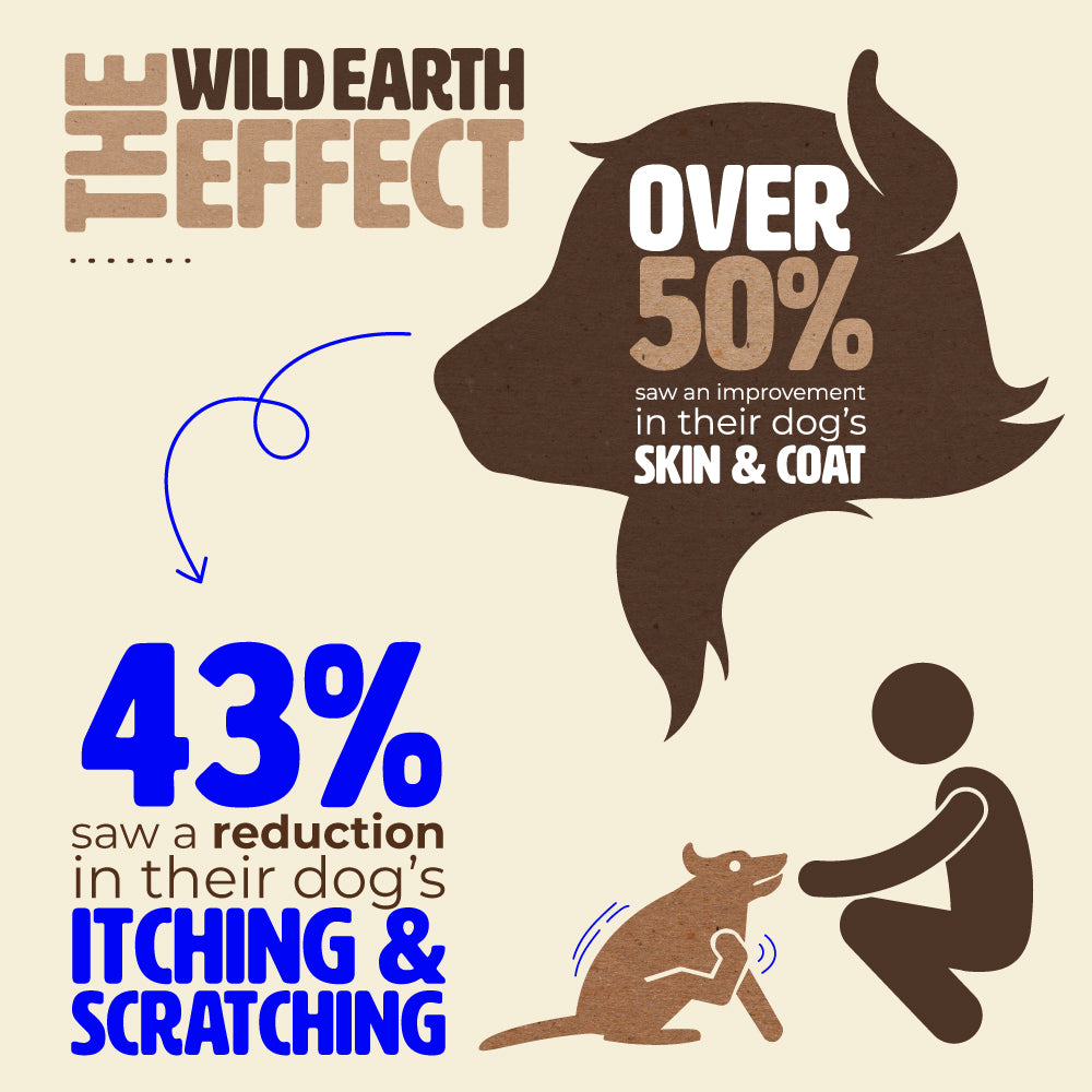 Wild Earth Dog Food Impact On Skin And Allergies