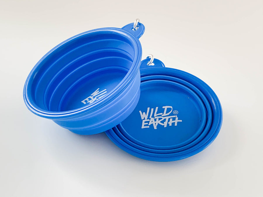 Free Dog Bowl With Food Purchase