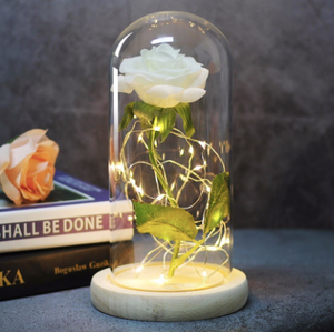 The Beast Red Rose In A Glass Dome With Led Light Wooden Base