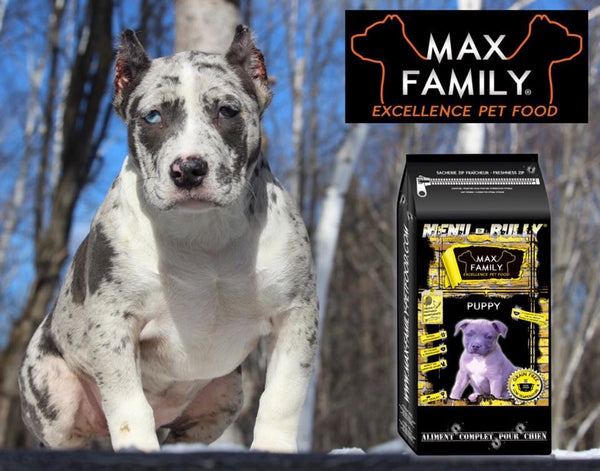 MAX FAMILY PET FOOD MENU BULLY PUPPY Bully-Shop.com