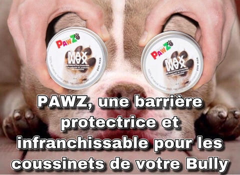 Bully-shop.com PAWZ MAX WAX Cire coussinet