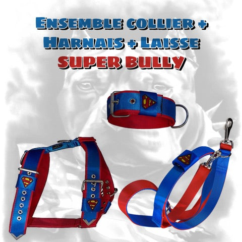 SUPER BULLY Ensemble Collier + Harnais + laisse