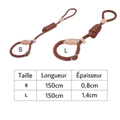Laisse-Collier d'Education BS.v1