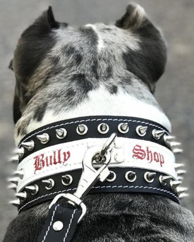 "Bully-Shop ""MONSTER"" Collier Cuir Personnalisable de grande qualité pour AMERICAN BULLY"