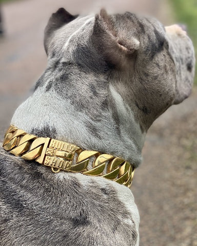 """BALBOA Gold"" Collier Miami Cuban Link 32mm"