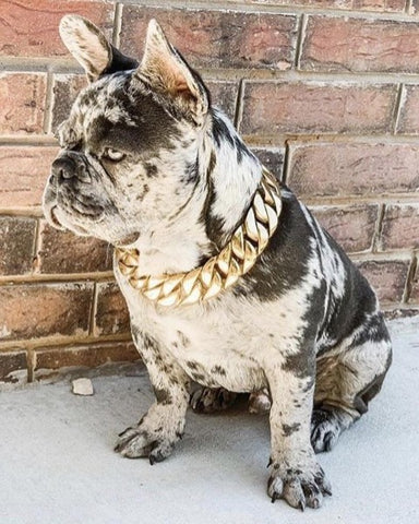"Bully-Shop.com ""LE MILLIONNAIRE"" Collier Miami Cuban Link Collier Cubain"
