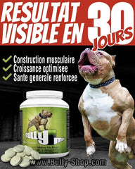 Bully-Shop.com BULLY MAX MUSCLE BUILDER