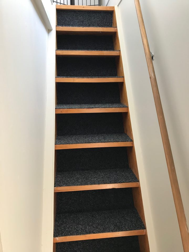 stairs with garage carpet