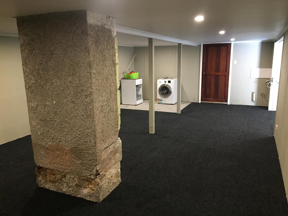 basement with carpet