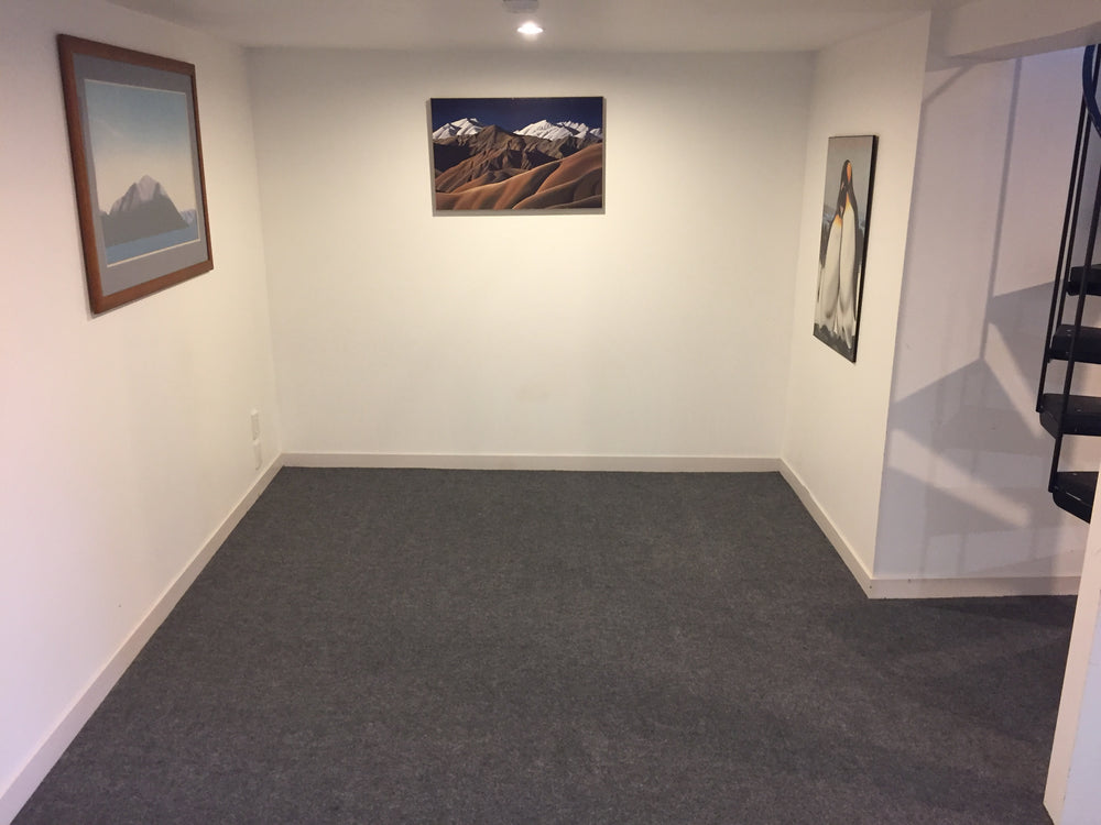 light grey carpet installed in a basement
