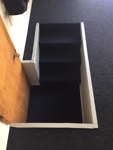 garage and stairs carpeted in Auckland