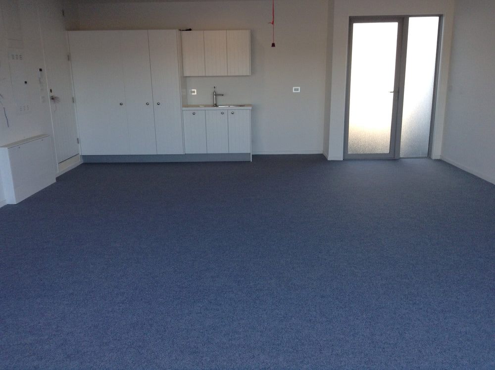 Show Home with garage carpet