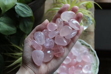 Rose quartz tumbled stones (large set of 3)