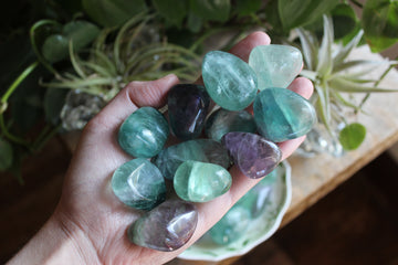 Large/Med rainbow fluorite tumbled stones (set of 3)