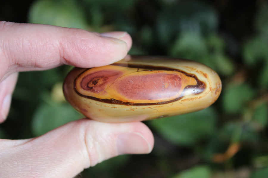 Polychrome jasper pocket stone 7