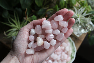 Rose quartz tumbled stones (small set of 3)