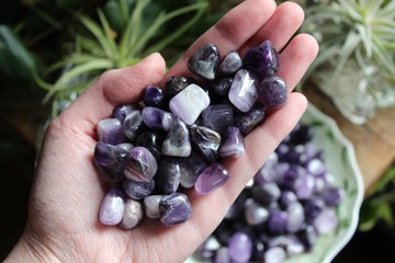 Amethyst tumbled stones (small set of 3)