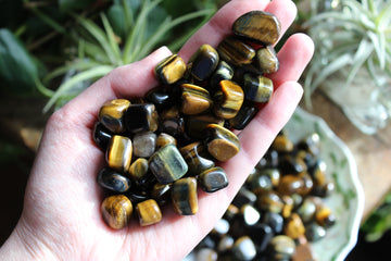 Blue tiger eye tumbled stones (small set of 3)