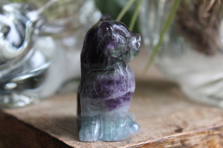 Rainbow fluorite carved cat 9