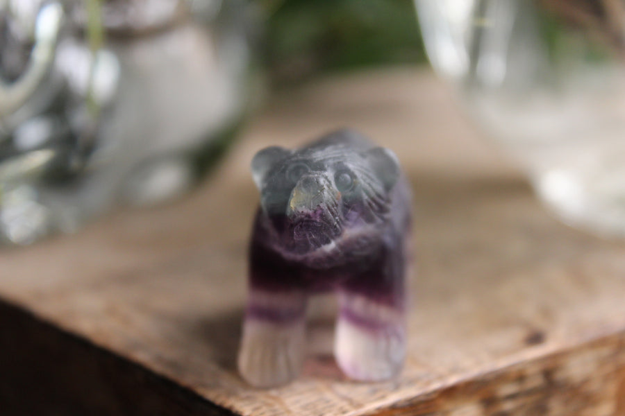 Hand carved rainbow fluorite bear 4