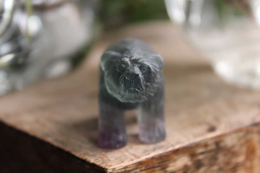 Hand carved rainbow fluorite bear 5