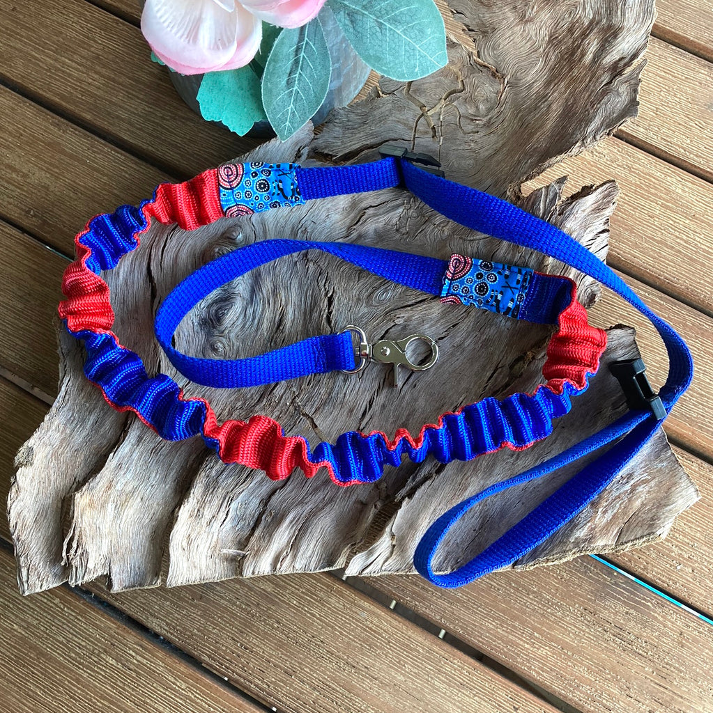 20mm Blue/Red Stretchy Bungee Dog Leash/Lead ideal for Sniffer Walking -