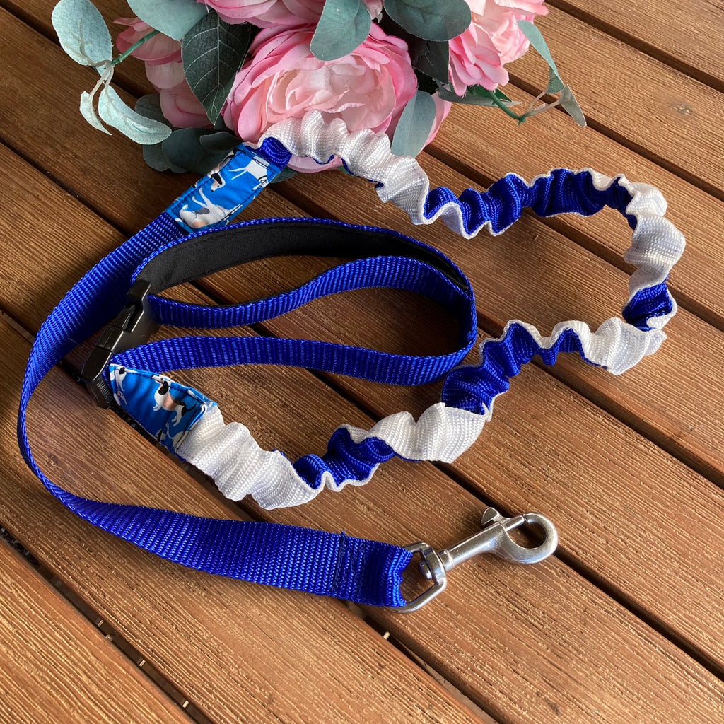 25mm Blue/White Long Stretchy Bungee Dog Leash/Lead ideal for Sniffer Walking -